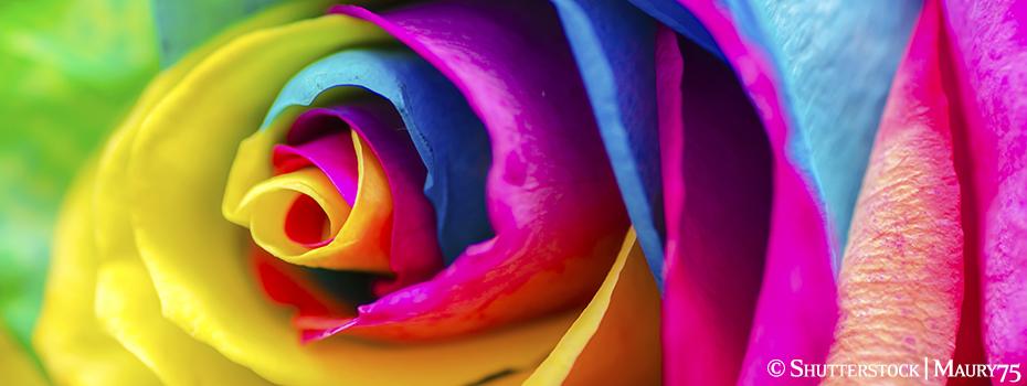 Farbwahl Hochzeitsdeko Ratgeber